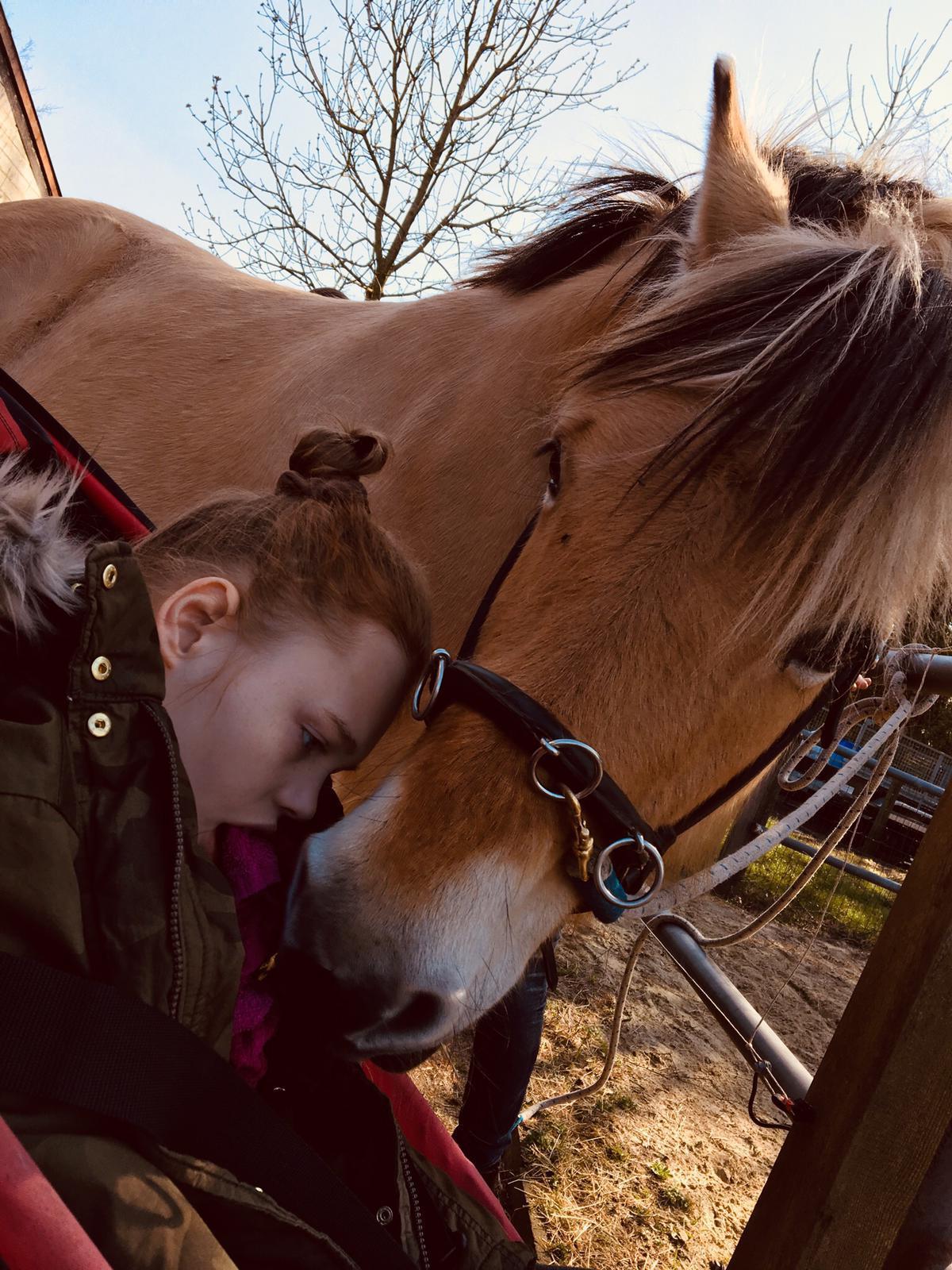 lobke en haar paard